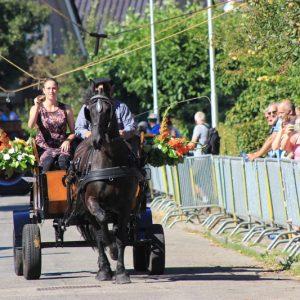 (128) Ringsteken paarden (Foto: Henno Koudijs)