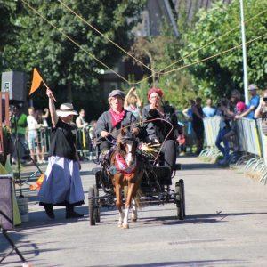 (134) Ringsteken paarden (Foto: Henno Koudijs)