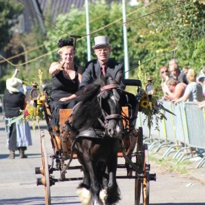 (136) Ringsteken paarden (Foto: Henno Koudijs)