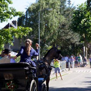 (130) Ringsteken paarden (Foto: Berry Jakobsen)