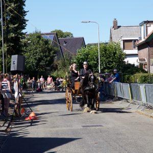 (131) Ringsteken paarden (Foto: Berry Jakobsen)