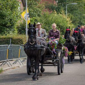 (157) Ringsteken paarden (Foto: Maaike van den Brink)