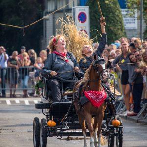 (163) Ringsteken paarden (Foto: Maaike van den Brink)