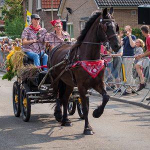 (164) Ringsteken paarden (Foto: Maaike van den Brink)
