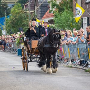 (165) Ringsteken paarden (Foto: Maaike van den Brink)