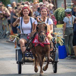 (166) Ringsteken paarden (Foto: Maaike van den Brink)