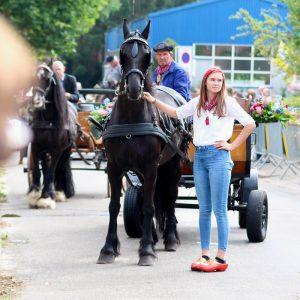 (168) Ringsteken paarden (Foto: Suzanne Veltink)