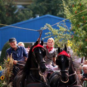 (170) Ringsteken paarden (Foto: Suzanne Veltink)
