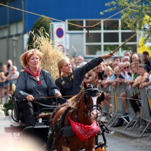 (171) Ringsteken paarden (Foto: Suzanne Veltink)