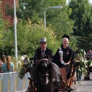 (174) Ringsteken paarden (Foto: Suzanne Veltink)
