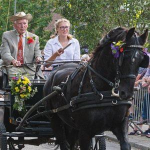 (152) Ringsteken paarden (Foto: Anneke Kho)