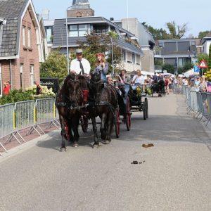 (154) Ringsteken paarden (Foto: Berry Jakobsen)