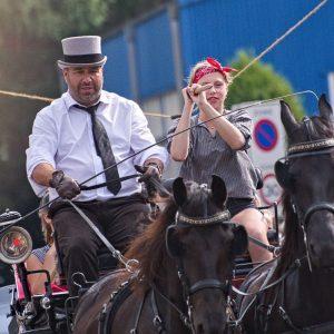 (144) Ringsteken paarden (Foto: Anneke Kho)