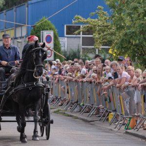(146) Ringsteken paarden (Foto: Anneke Kho)
